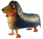 Walking Balloon .Dachshund  - I-14438