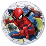 Single bubble.Marvels Spiderman - 55cm - QU-54052