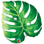 Tropical Philodendron - 53cm - 87961